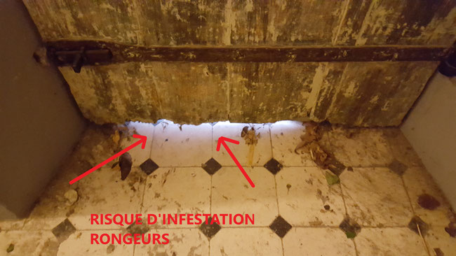trous dans la porte est égal à probléme de rat et souris