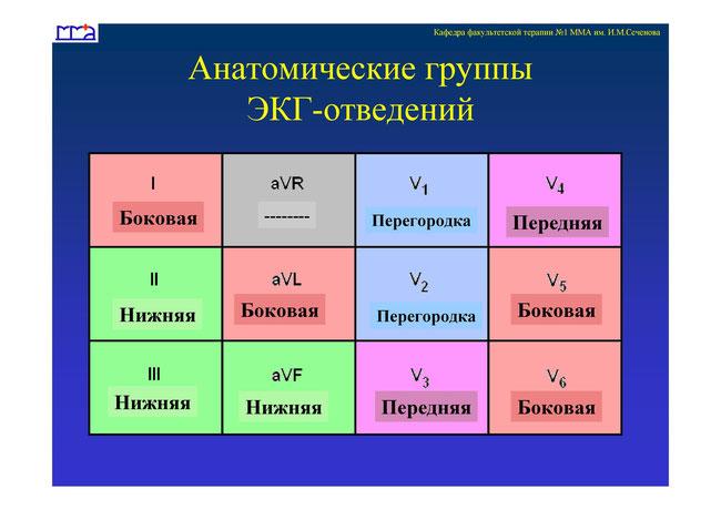 ВОЗ  Инфекционные болезни