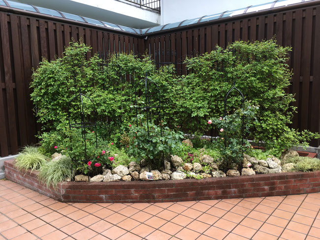 広島 ガーデン 庭づくり バラ 廿日市