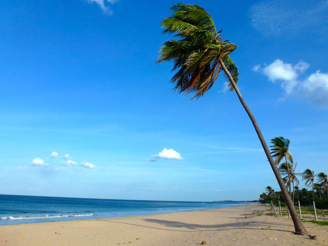 Bild: Strand von Nilaveli