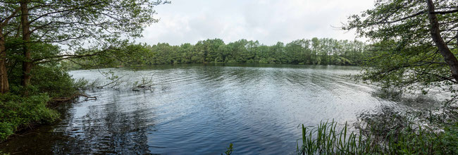 Bild: Blick auf den Lakower See