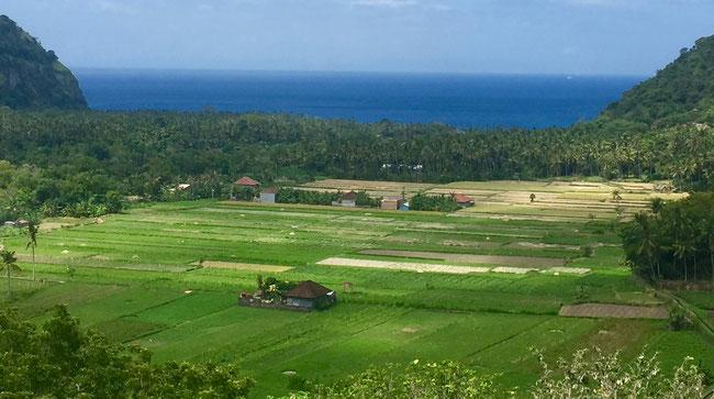 Bild: Blick über das Land aufs Meer an der Ostküste von Bali