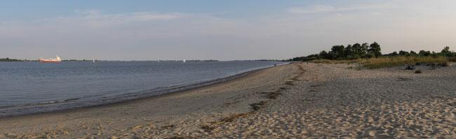 Bild: An der Elbe bei Altenwörter Außendeich