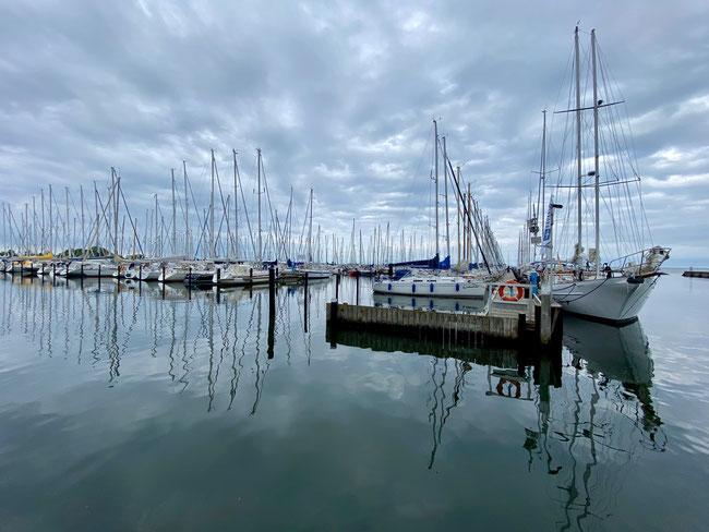 Bild: Masten der Yachten von Maasholm
