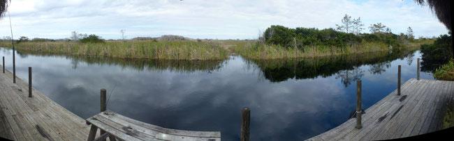 Bild: Everglades