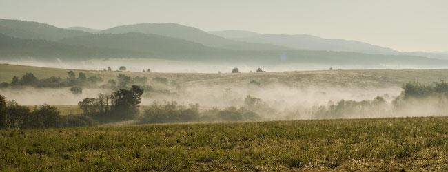 Bild: Die Landschaft auf unserer Ikonenroute in Polen