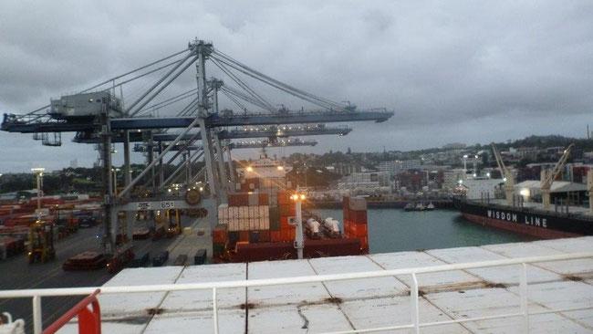Bild: Im Hafen von Auckland