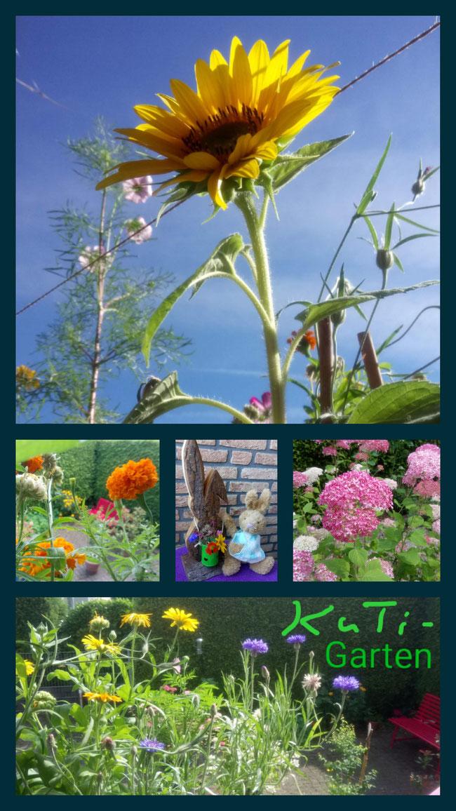 In ihrem Garten fühlen sich die Kuscheltiere pudelwohl und verbreiten mit ihren lustigen Aktivitäten jede Menge gute Laune!