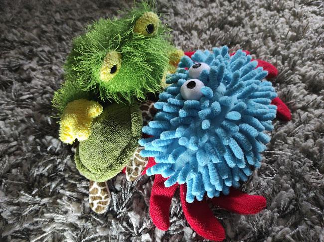 Freundschaft: Froschi, Azzurro und Panzerotti verstehen sich gut.
