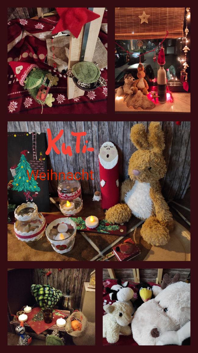 Weihnachtsmarlt und Kinderpunsch, Weihnachtsfenster bei den Bocholter KuTis