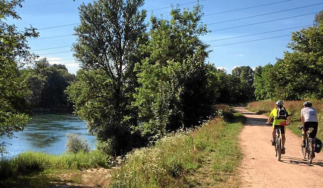 Wanderweg und Radweg ohne Steigungen am Rheinufer bei Bad Bellingen