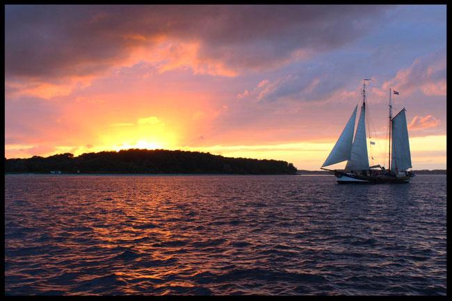 Pegasus segeln Kieler Woche Sunset Kieler Förde