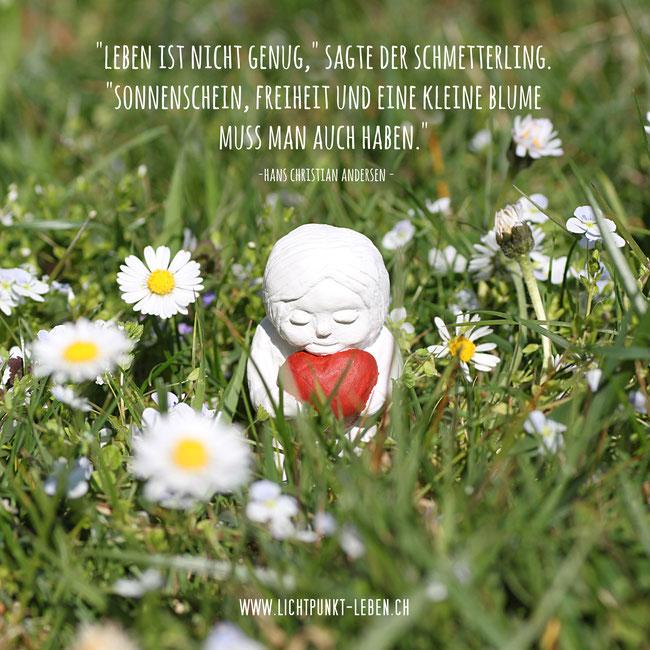 Foto-/Zitat-Karte von Lichtpunkt Leben, Kleine Figur mit Herz steht in Blumenwiese, Zitat von Hans Christian Andersen, Leben ist nicht genug, sagte der Schmetterling. Sonnenschein, Freiheit und eine kleine Blume muss man auch haben.