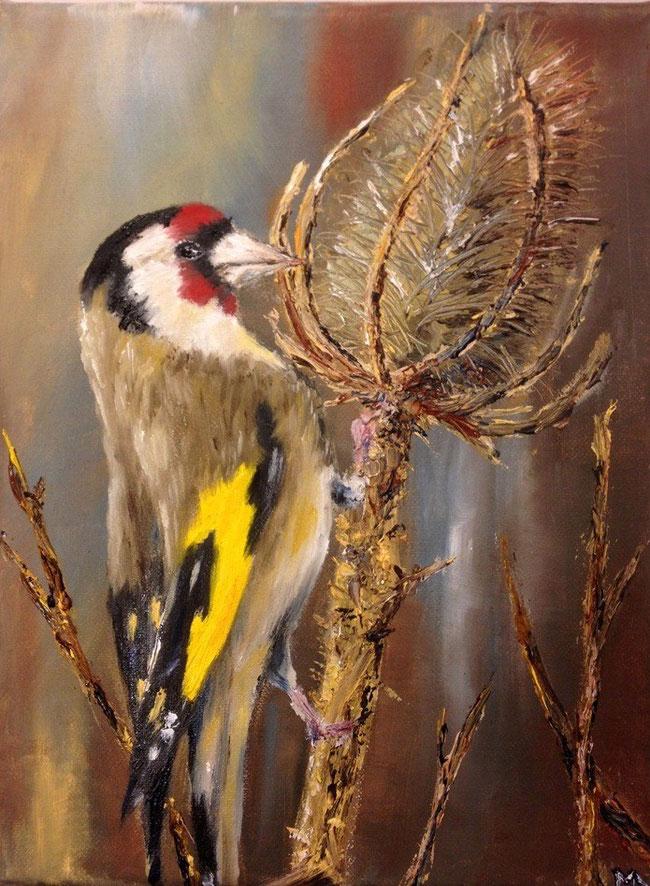 Distelfink in Öl, gemalt von Melina Alt