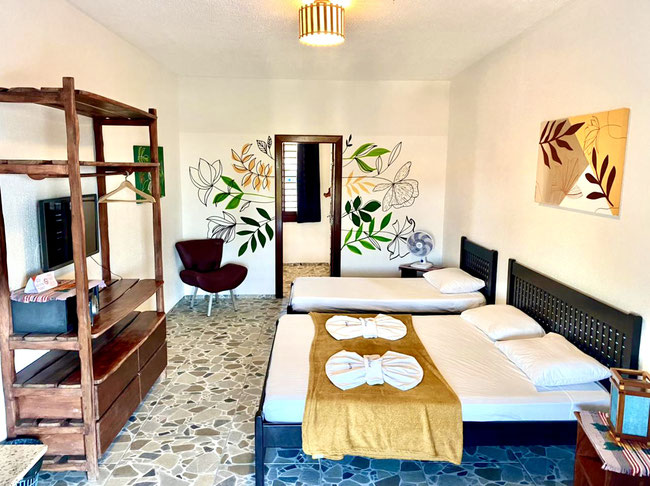 Large Double Room at the Cumbuco Guesthouse !