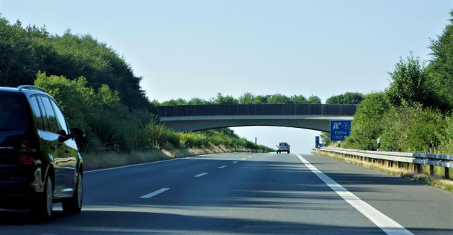 Wildbrücke über Autobahn  Foto: Dr. Hans-Heinrich Krüger