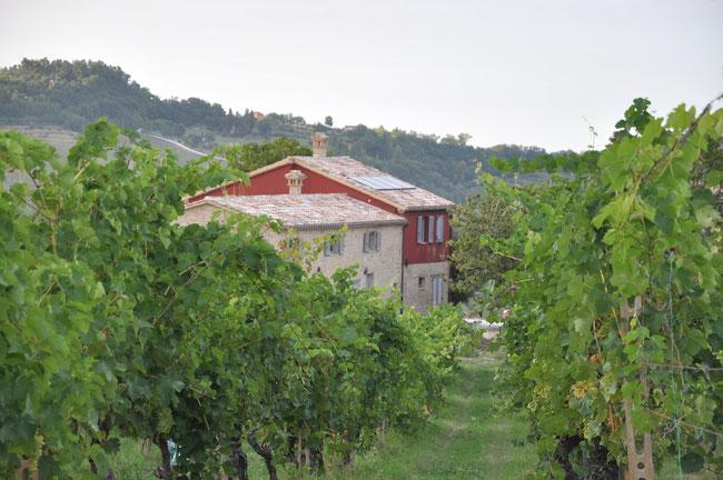 Casa Pietrone