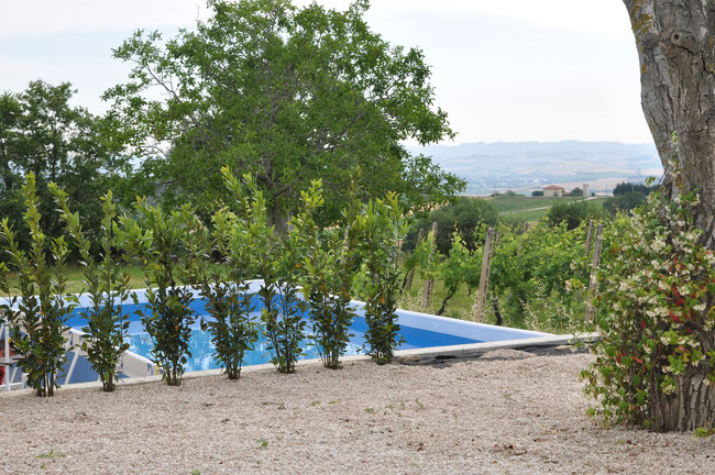 pool 7 x 4 m