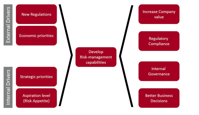 SEED Advisory Risk Management Capabilities Development