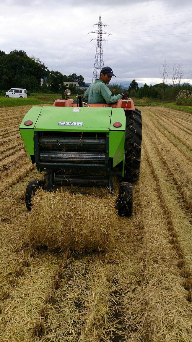 稲わらを丸めて運び出し堆肥にして還元します。