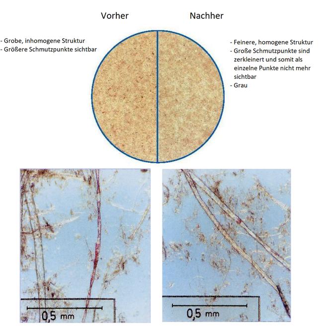 Fasern Vor- und Nach einem Knetdisperger