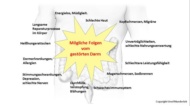 Ein gestörter Darm begünstigt viele Karankheitssymptome