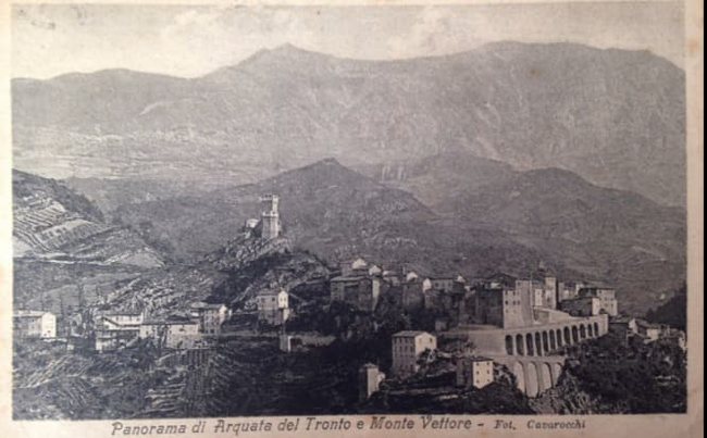 Le Vigne nel panorama Arquatano.