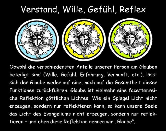 Verstand, Wille, Gefühl, Reflex