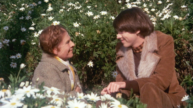 Ruth Gordon & Bud Cort in Harold & Maude