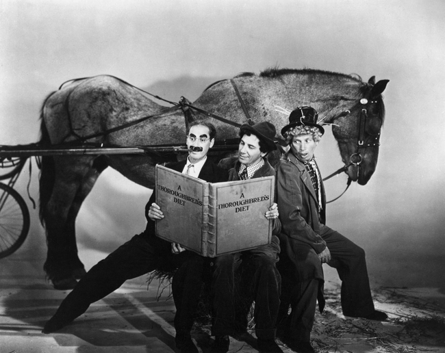 The Marx Brothers in A Day At The Races