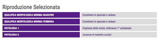 Qualifiche e esenzioni per la riproduzione selezionata del Cavalier King Charles Spaniel da sito ENCI