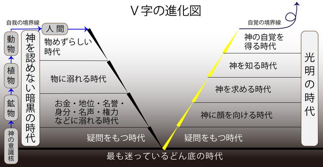 V字の進化図