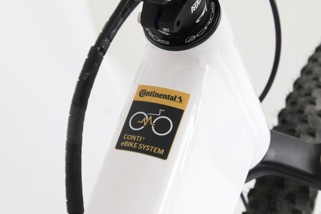 Vom Motor mit Zubehör bis zum Zahnriemen bietet Benchmark Drives ganze Systeme.
