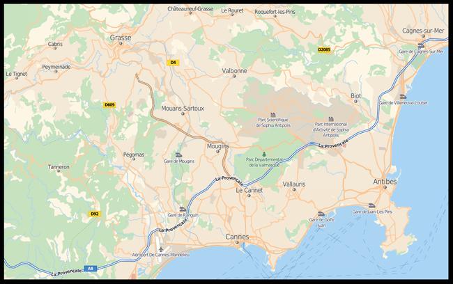 Intervention de dépigeonnage dans les Alpes Maritimes 06.