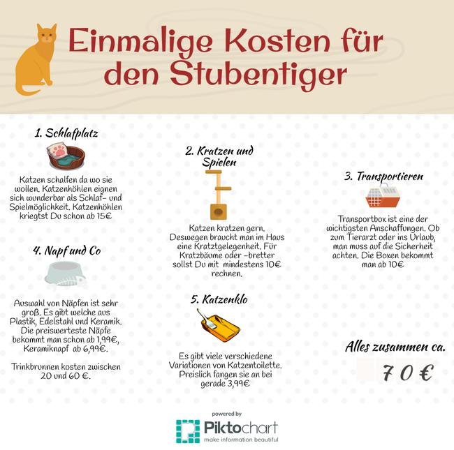 Tierernährungsberatung-Erstausstatung für Katzen mit den fallenden Kosten