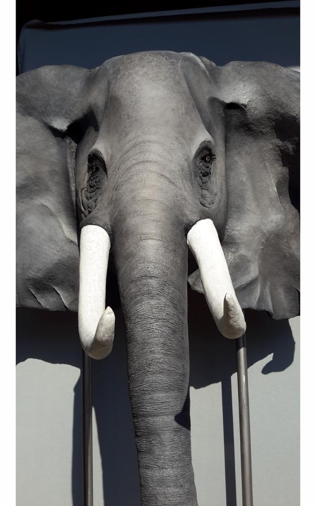 Tête  d'éléphant  (H2m10 L2m20 P1m10)  sur socle acier