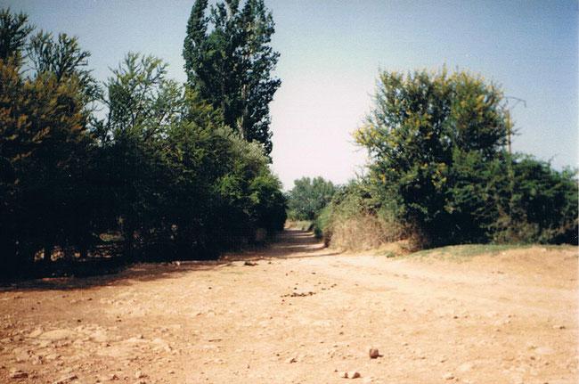 entrée de ma ferme Aïn Béranis