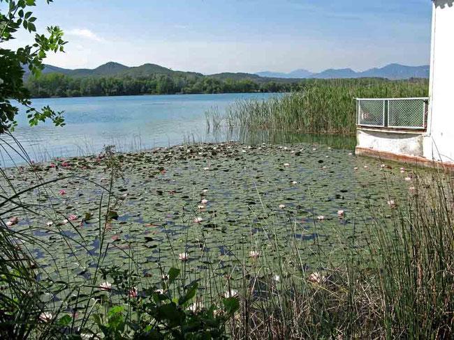 See in Banyoles, Spanien 2011 - (c) Traudi