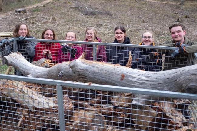 Das zu entsorgende Holz (v.l.: Ricarda, Clarita, Hannah, Julia, Isabell, Sonja, Konrad)