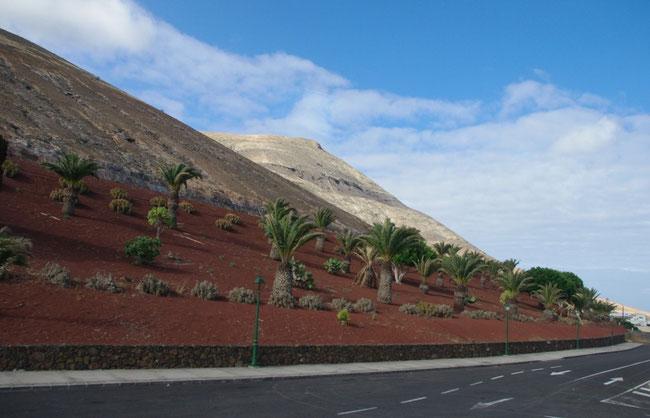 Lanzarote - Insel der Vulkane