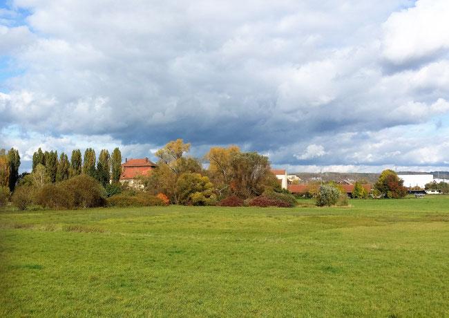 Schloss Pürkelgut, Regensburg