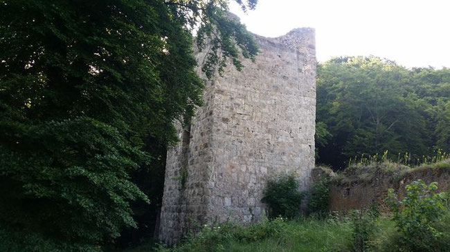 Burg Tachenstein, Riedenburg