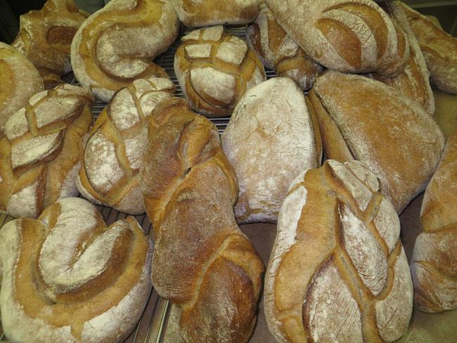 Pains Boulangerie ROLFO