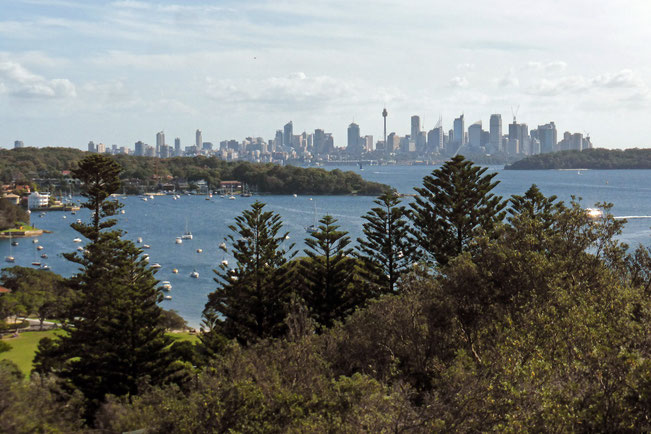 Watsons Bay and the city centre