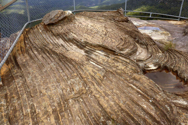 The rock platform at Tarpeian Rock Lookout