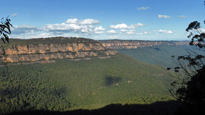 Sandstone cliffs in the Blue Mountains