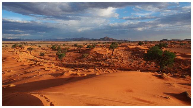 Grande mer de sable du Namib au Namibrand ; Namibie