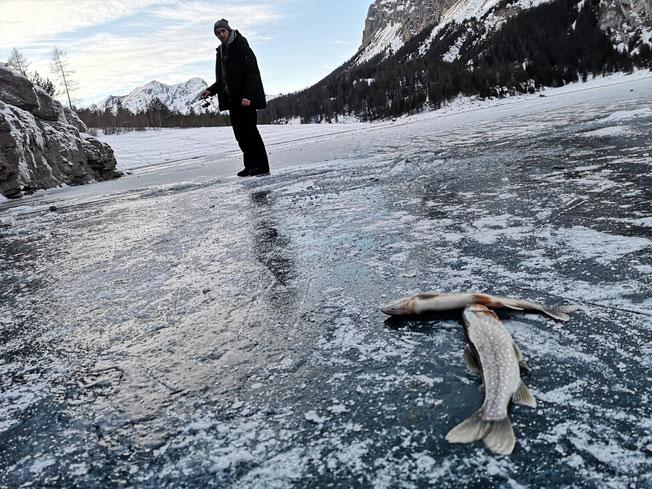Drill Point Onlineshop - Unterkategrie Titelbild - Eifischen und Zubehör