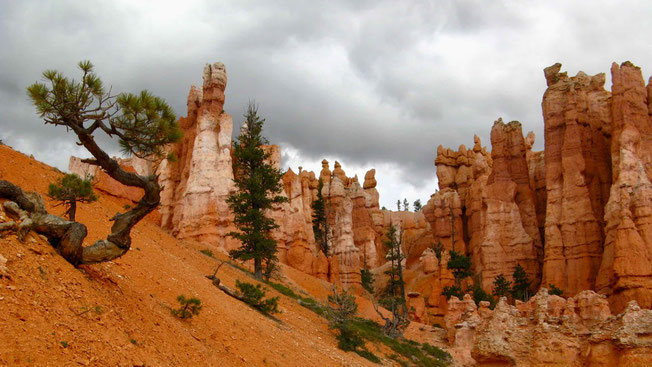 Westen der USA: Nationalpark Bryce Canyon