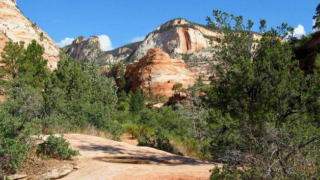 USA Rundreise, Reiseberichte: Auf dem Weg zum Bryce Canyon - Checkerboard Mesa und Red Canyon